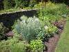herbgarden3